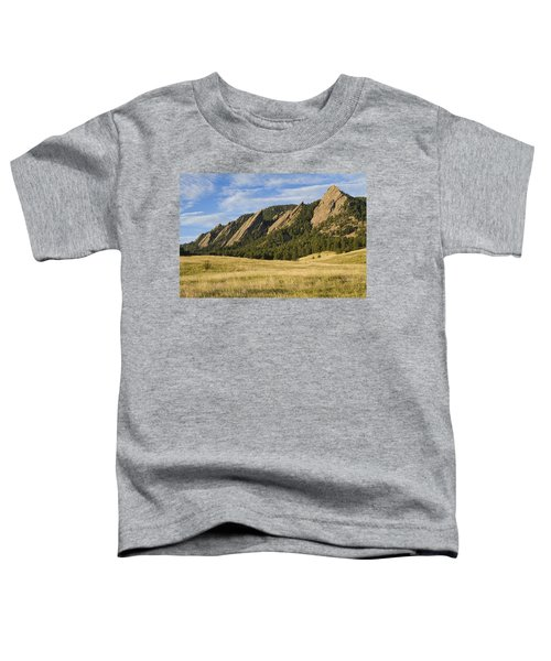 Flatirons With Golden Grass Boulder Colorado Toddler T-Shirt