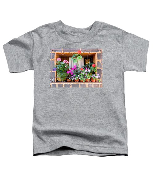 Flowers In A Mexican Window Toddler T-Shirt