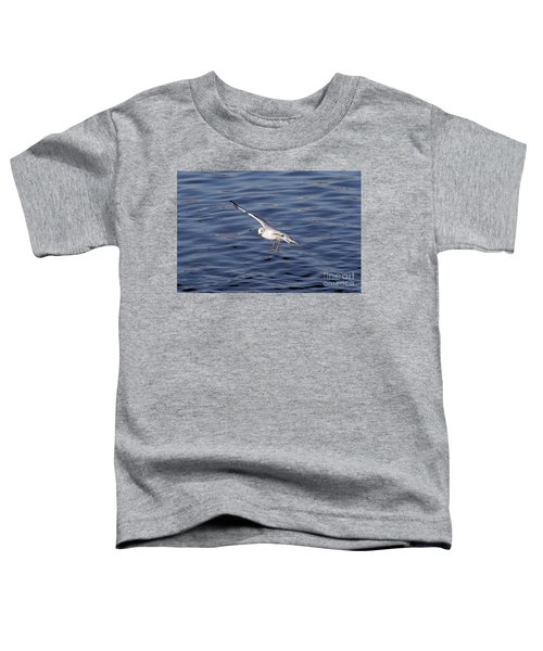 Flying Gull Toddler T-Shirt by Michal Boubin