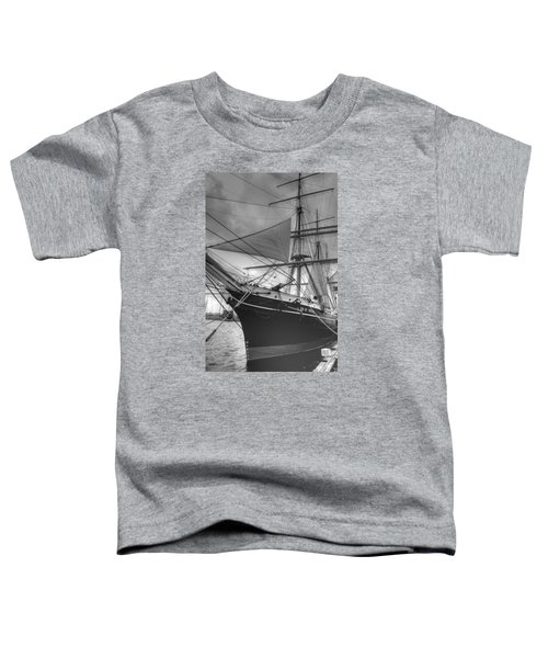 Star Of India Toddler T-Shirt