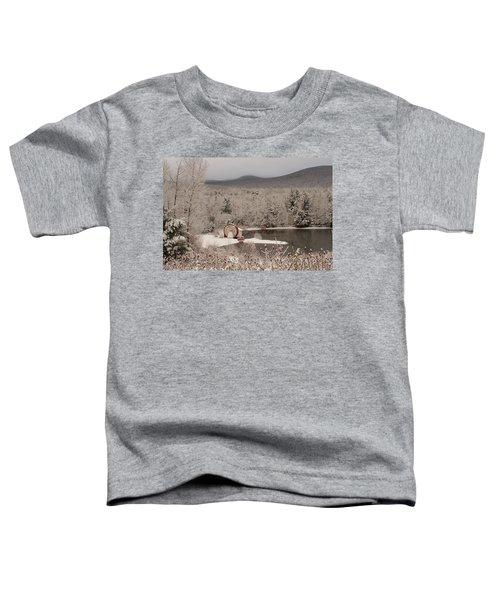 Indian Head Nh Toddler T-Shirt