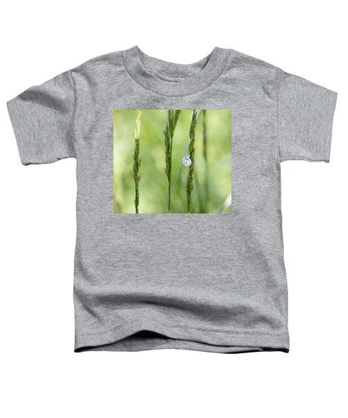 Snail On Grass Toddler T-Shirt