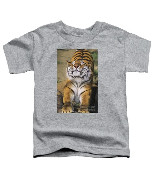 A Tough Day Siberian Tiger Endangered Species Wildlife Rescue Toddler T-Shirt