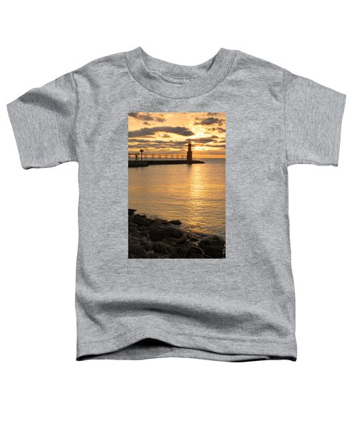 Across The Harbor Toddler T-Shirt by Bill Pevlor