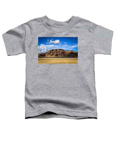 Aferican Grass And Mountain In Sossusvlei Toddler T-Shirt