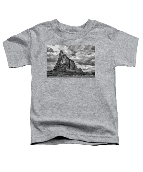 All Aboard Bw Toddler T-Shirt