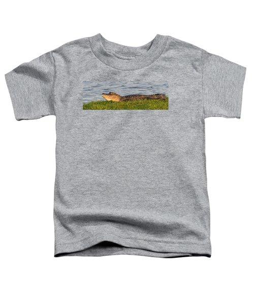 Alligator Smile Toddler T-Shirt