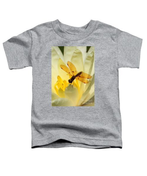 Amber Dragonfly Dancer Toddler T-Shirt