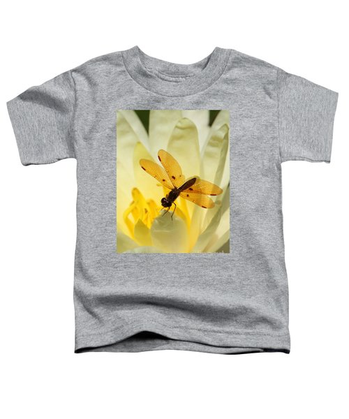 Amber Dragonfly Dancer Toddler T-Shirt