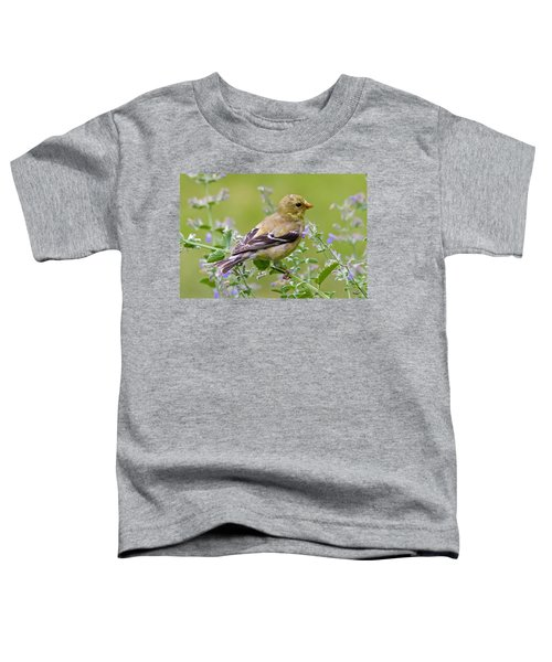 American Goldfinch Toddler T-Shirt
