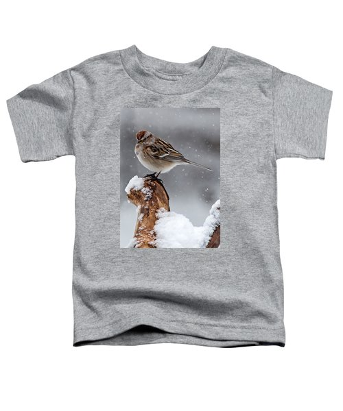 American Tree Sparrow In Snow Toddler T-Shirt