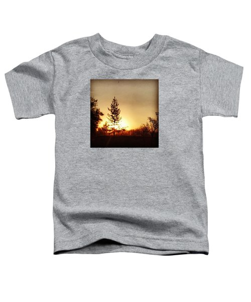 Another Beautiful Day.... Toddler T-Shirt