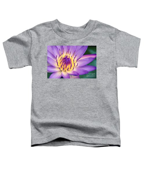 Ao Lani Heavenly Light Toddler T-Shirt