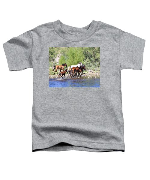 Arizona Wild Horse Family Toddler T-Shirt