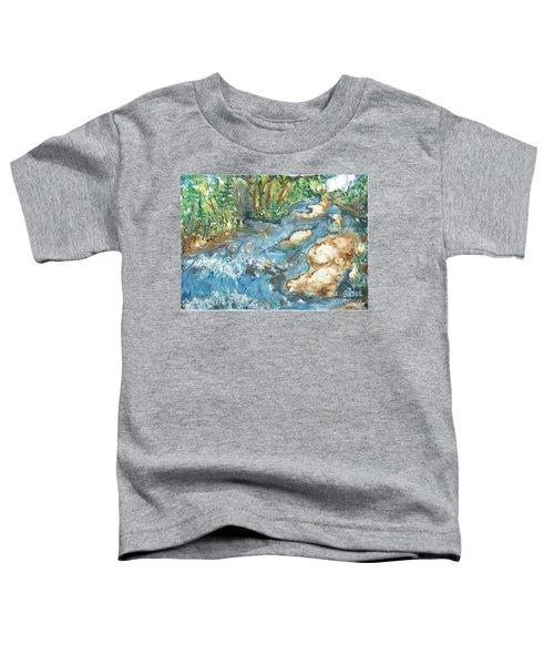 Arkansas Stream Toddler T-Shirt