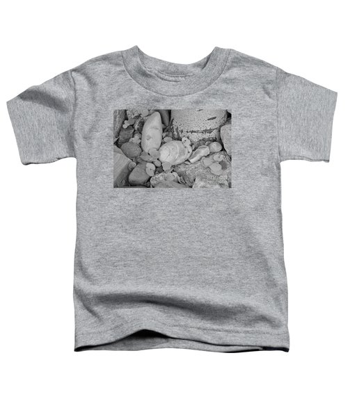 Aspen Leaves On The Rocks - Black And White Toddler T-Shirt