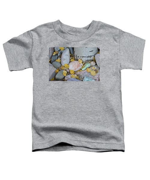 Aspen Leaves On The Rocks Toddler T-Shirt