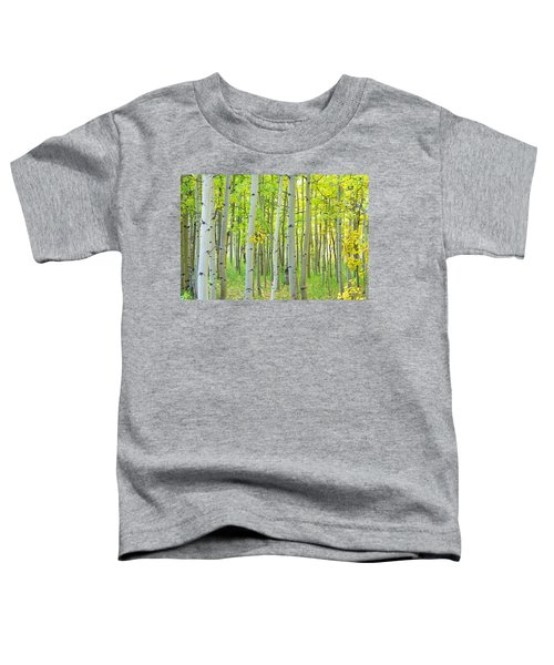 Aspen Tree Forest Autumn Time  Toddler T-Shirt