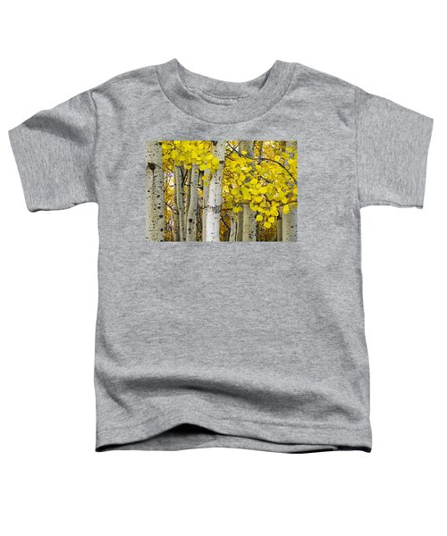Aspens At Autumn Toddler T-Shirt