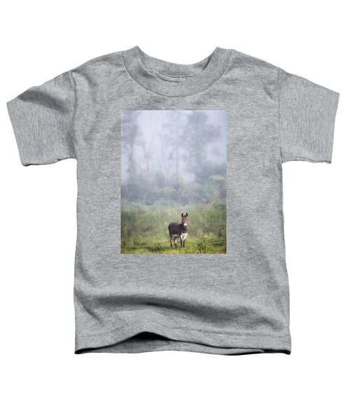 August Morning - Donkey In The Field. Toddler T-Shirt
