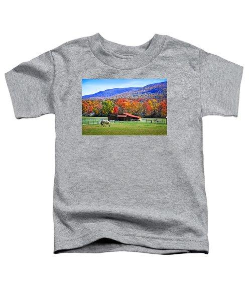 Autumn In Rural Virginia  Toddler T-Shirt
