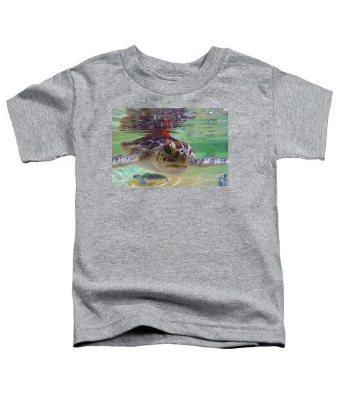 Baby Turtle Toddler T-Shirt