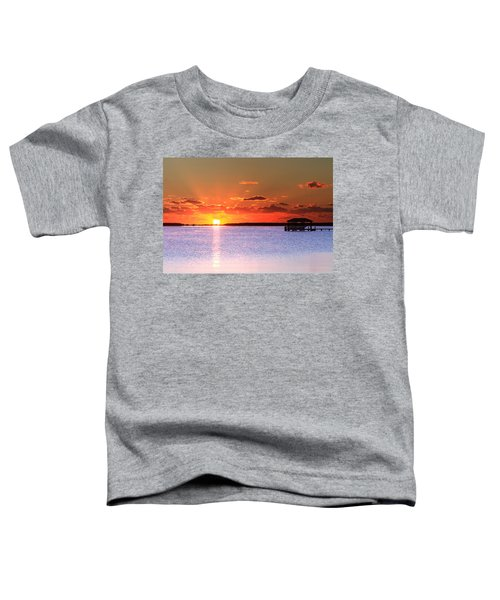 Back Bay Sunrise Toddler T-Shirt