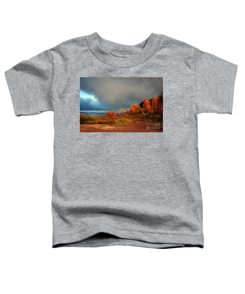 Bad Weather Coming Toddler T-Shirt