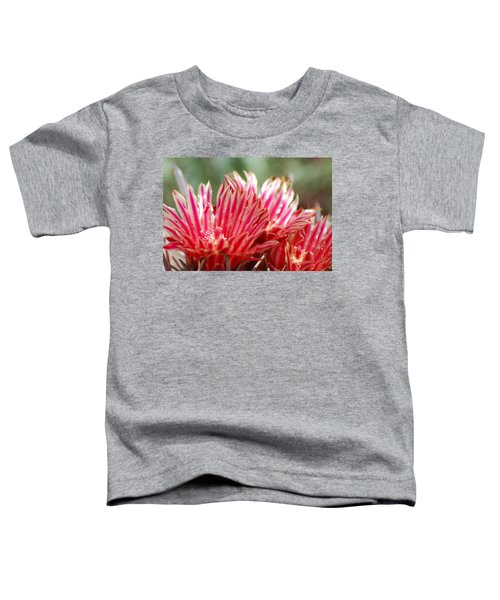 Barrel Cactus Flower Toddler T-Shirt