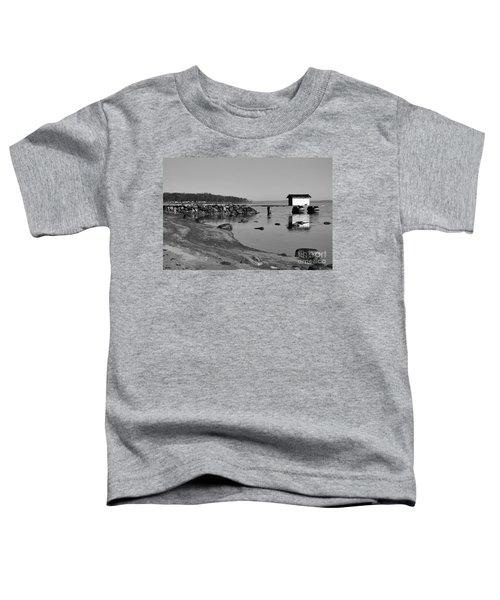Bathing Jetty 2 Toddler T-Shirt