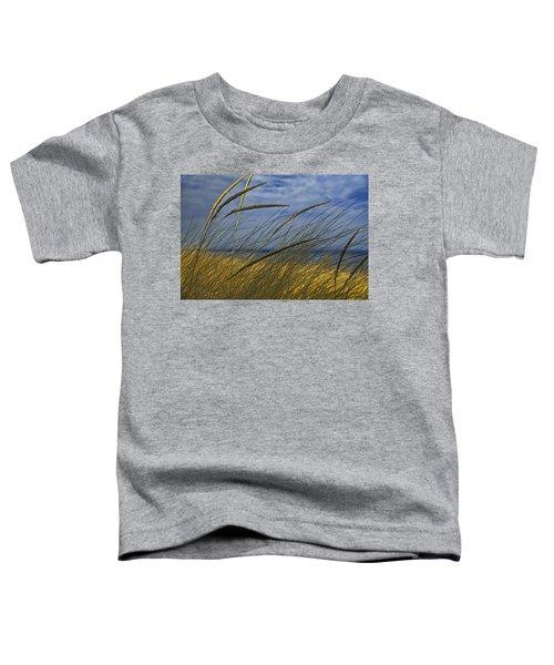 Beach Grass On A Sand Dune At Glen Arbor Michigan Toddler T-Shirt