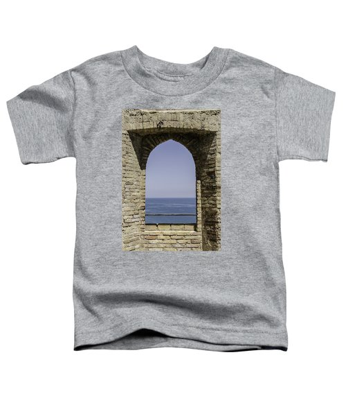 Beyond The Gate Of Infinity Toddler T-Shirt