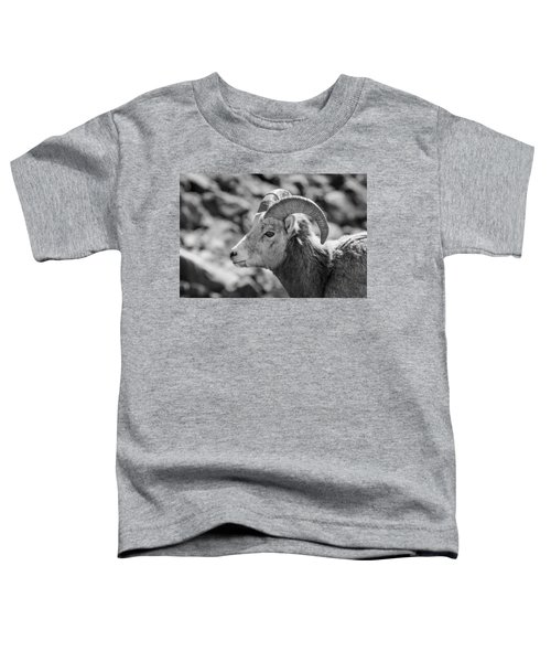 Big Horn Sheep Profile Toddler T-Shirt