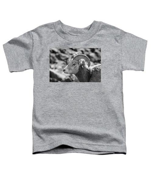 Big Horn Sheep Profile Toddler T-Shirt
