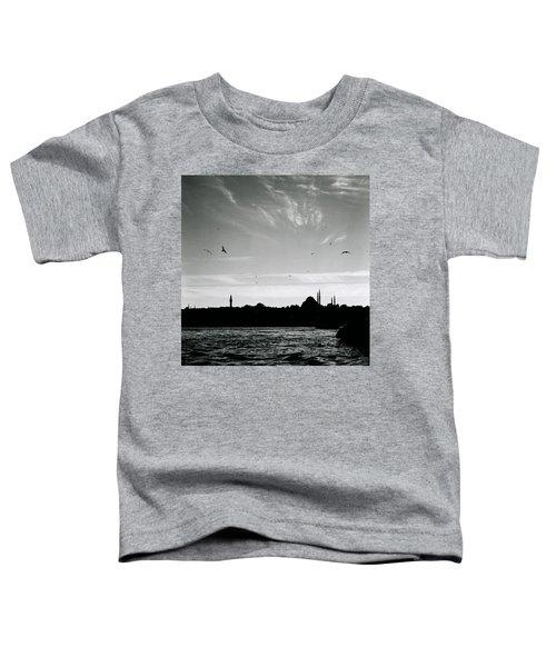 Birds Over The Golden Horn Toddler T-Shirt