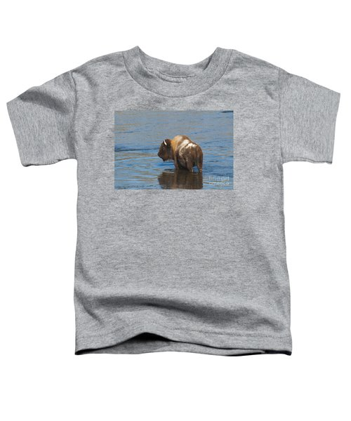 Bison Crossing River Toddler T-Shirt