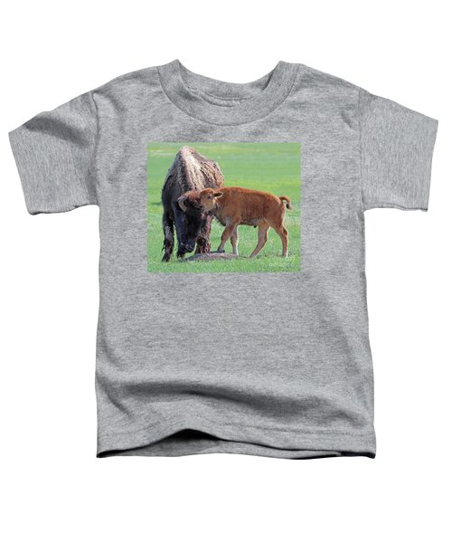 Bison With Young Calf Toddler T-Shirt