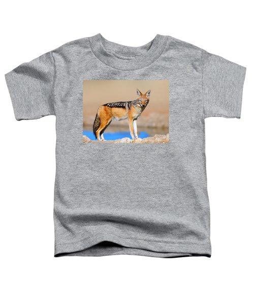 Black-backed Jackal Toddler T-Shirt