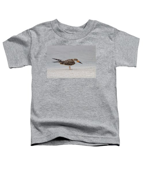 Black Skimmer Toddler T-Shirt