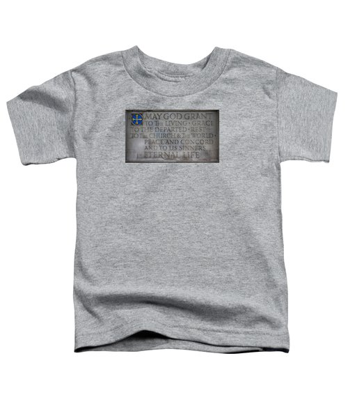 Blessing Toddler T-Shirt by Stephen Stookey