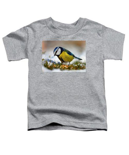 Blue Tit Toddler T-Shirt