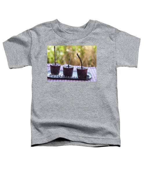 Blueberry Ice Pops Toddler T-Shirt by Juli Scalzi