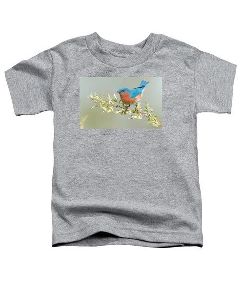 Bluebird Floral Toddler T-Shirt