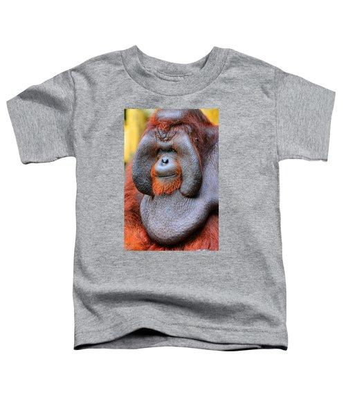 Bornean Orangutan Iv Toddler T-Shirt by Lourry Legarde