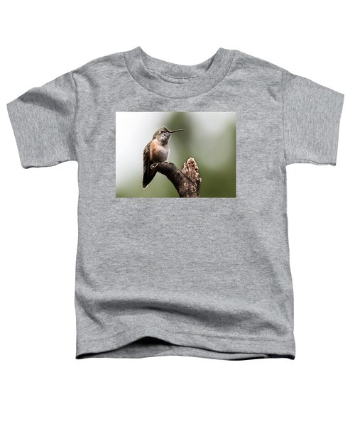 Broad-tailed Hummingbird Sit  Toddler T-Shirt