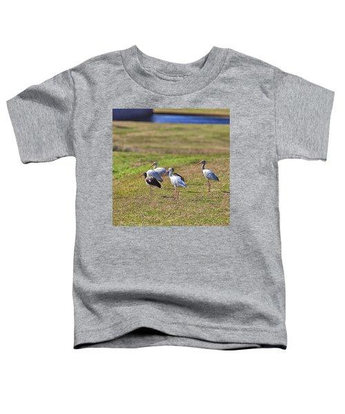 Bug Hunting Toddler T-Shirt