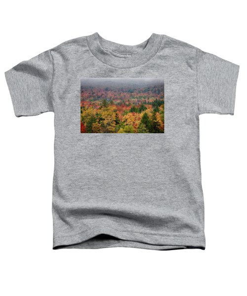 Cabin In Vermont Fall Colors Toddler T-Shirt