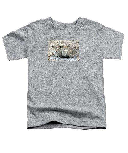 Camo Cat Toddler T-Shirt
