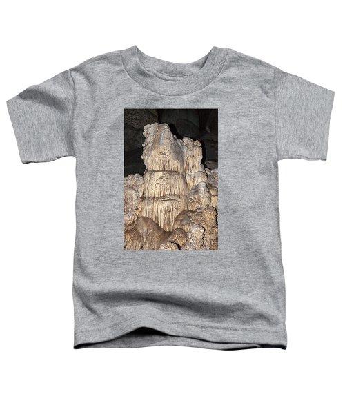 Carlsbad Caverns National Park Toddler T-Shirt