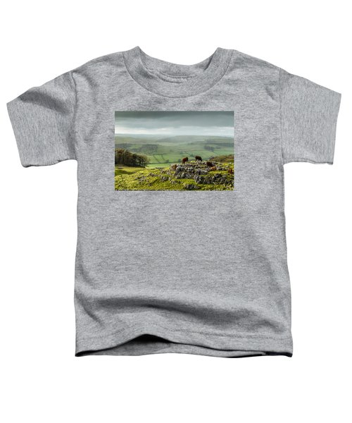 Cattle In The Yorkshire Dales Toddler T-Shirt